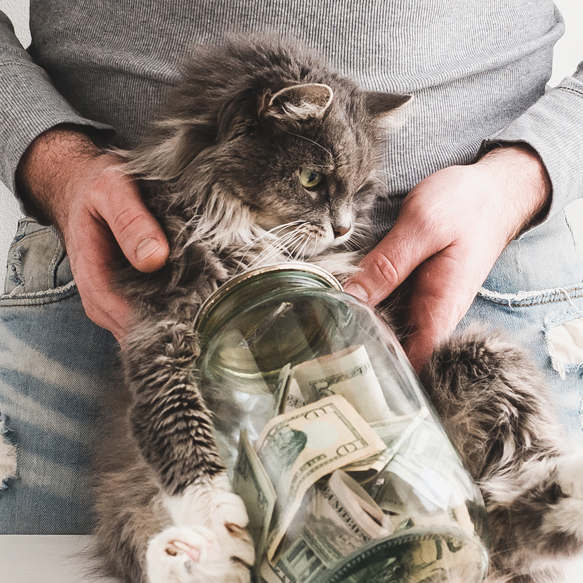 5 Ways to Save on Veterinary Bills – and 6 Ways NOT to